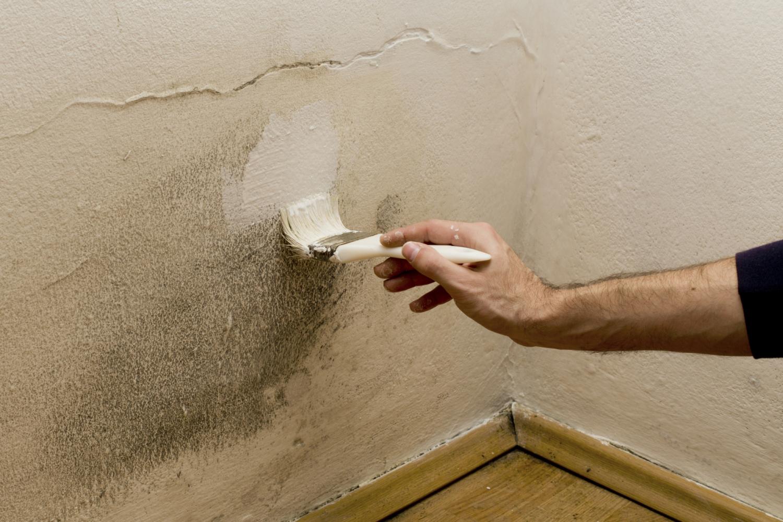 Umidità nei muri: come eliminarla grazie alla nanotecnologia